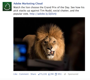 Facebook Boosted Post_Adobe
